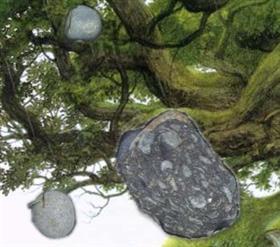 Bouncing Rocks