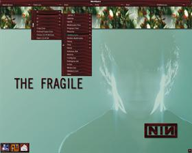 TheFragile