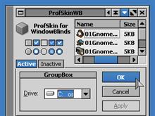 ProfSkinWB