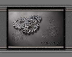 Micron2