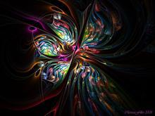 fiore notturno by clarissafiller
