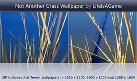 Not Another Grass Wallpaper