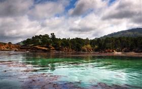 Whalers Cove II