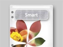 Adobe Creative Suite 1.0 Smart File