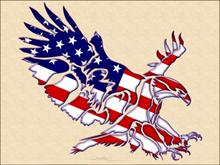 American Eagle Wallpack