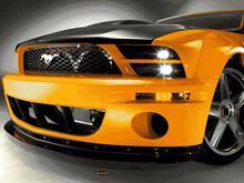 Mustang 2008