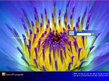 XP Flowered