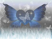 btterflywings