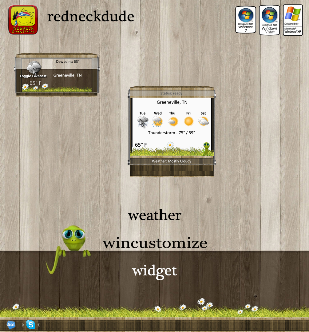 WinCustomize Weather Widget