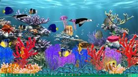 Undersea Fantasy