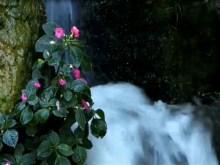 villa waterfall