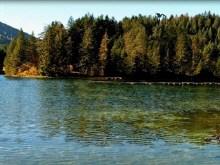 Austria Duck Lake