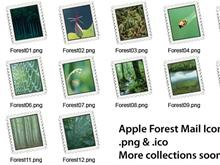 Apple Forest Mail Collection