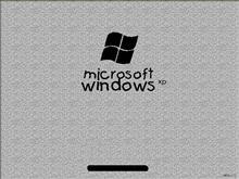 Windows Gary