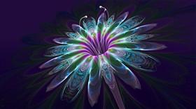 Patterned Flora