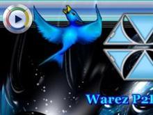 Warez P2P