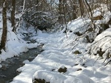 Snowy_Mountain_Creek