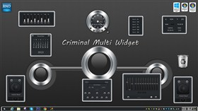 Criminal Multi Widget