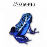 Azureus Blue Frog Icon