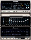 Pioneer Professional